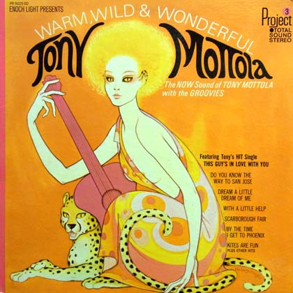 TONY MOTTOLA / WARM, WILD AND WONDERFUL