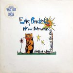 Edie Brickell & New Bohemians / Shooting Rubberbands At The Stars [USED LP]