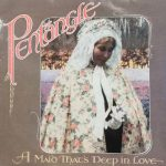 PENTANGLE ‎/ A MAID THAT'S DEEP IN LOVE [USEDLP]