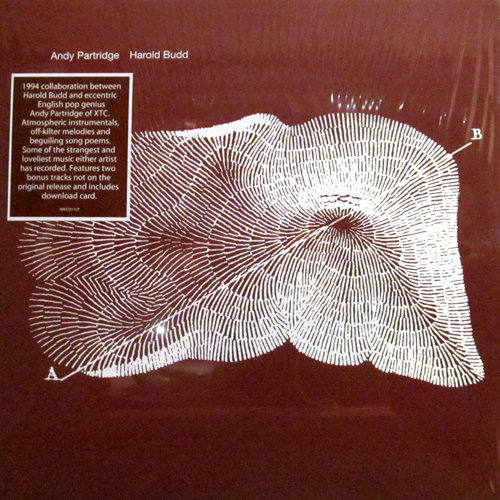 ANDY PARTRIDGE, HAROLD BUDD / THROUGH THE HILL