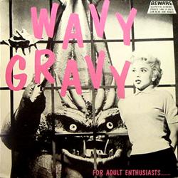 V.A. / WAVY GRAVY [USED LP/US]