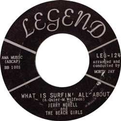 JERRY NORELL AND THE BEACH GIRLS / WHAT IS SURFIN' ALL ABOUT [USED 7/US] 1575円