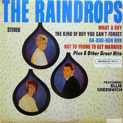 THE RAINDROPS / S.T. [USED LP/US] 2100円