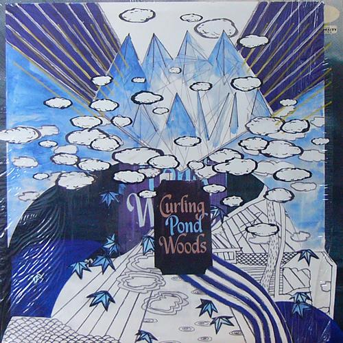 GREG DAVIS / CURLING POND WOODS [USED LP/US] 1050円