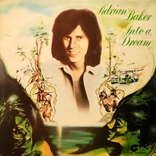 ADRIAN BAKER / INTO A DREAM [USED LP/UK] 2625円