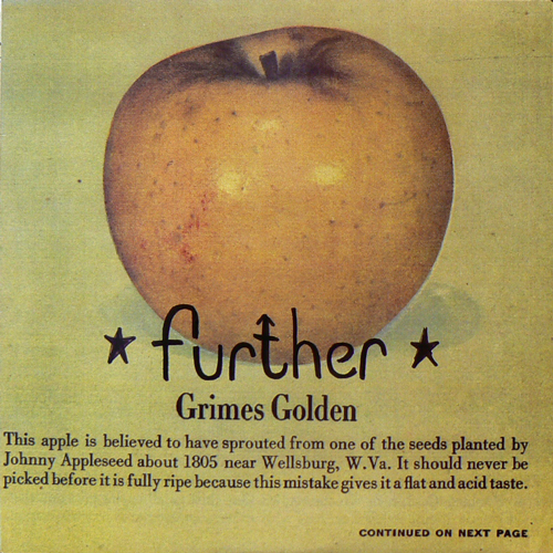 FURTHER / GRIMES GOLDEN [USED 10inch/US] 1260円