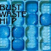 ザ・ブルーハーツ / BUST WASTE HIP [NEW 2LPs/JPN] 5093円
