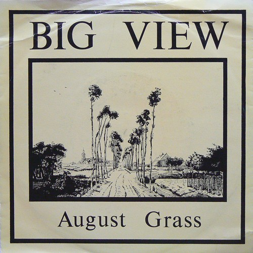 BIG VIEW / AUGUST GRASS ('82) [USED 7inch/UK] 1800円