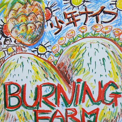 少年ナイフ / BURNING FARM ('83) [USED 8